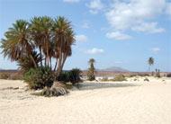 Kapverden Wüste
